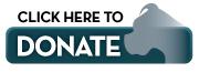 Please donate to Florida Boxer Rescue!
